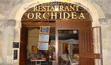 Restaurant Orchidea
